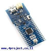 כרטיס פיתוח Arduino Fio