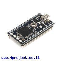 כרטיס פיתוח mbed NXP LPC1768